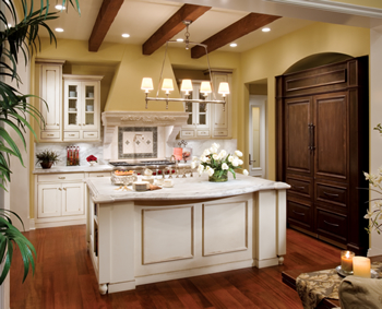 kitchen remodeling - cabinets, countertops, flooring, appliances